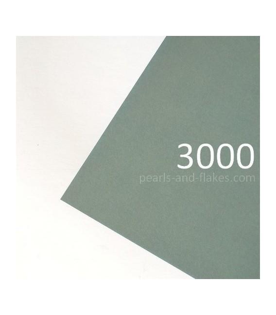 HOJAS ABRASIVAS 3000