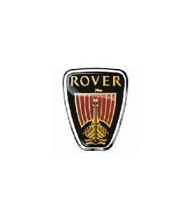 PINTURA ROVER