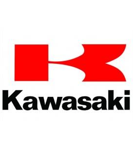 PINTURA KAWASAKI