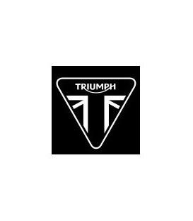 PINTURA TRIUMPH